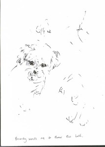 Brandy_sketches_pen_and_ink_MDorn