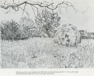 field of grass with a  round clipped shrub 1888 van gogh reed pen brown ink